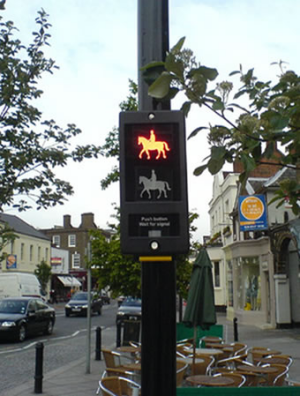 Horse crossing